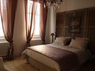 Appartement de charme et  jardin en centre ville - Reims vacation rentals