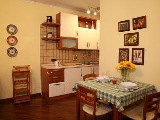 Nice Condo with Internet Access and Hair Dryer - Fiuggi vacation rentals