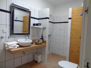 Nice B&B with Deck and Internet Access - San Francisco Javier vacation rentals