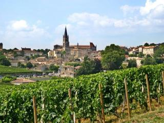 House Close to Saint Emilion - Libourne vacation rentals