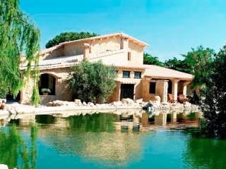 COMFORTABLE VILLA just outside Medieval Miravet - Miravet vacation rentals