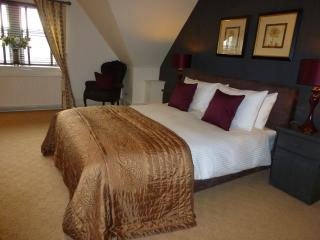 Perfect B&B with Internet Access and Hair Dryer - Paisley vacation rentals