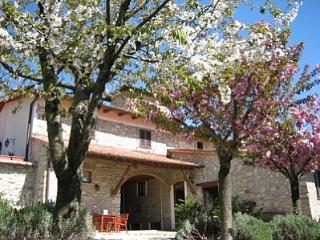 Cozy 2 bedroom House in Molino del Piano - Molino del Piano vacation rentals