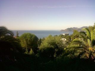 2 Bed 2 baths apt in Cannes, beautiful sea view - Cannes vacation rentals