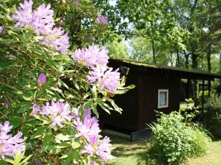 Beautiful 3 bedroom Chalet in Cenarth with Deck - Cenarth vacation rentals