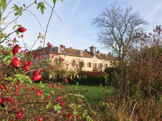 Chateau de Gressoux is a rugged farm - Pusy-et-Epenoux vacation rentals