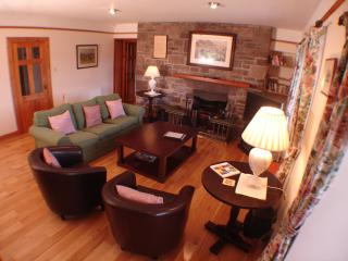 Nice House with Internet Access and Television - Comrie vacation rentals