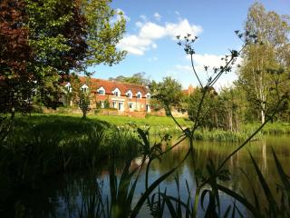 Cherry Blossom - Stratford-upon-Avon vacation rentals