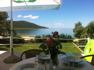 House - Island of Sestrunj - Dalmatia vacation rentals