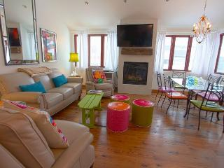 Telluride Lodge 332 - 4 Bd, 3.5 Ba Deluxe Condo - Sleeps 8 - Steps from Lift 7 - Newly Remodeled in 2013! - Telluride vacation rentals