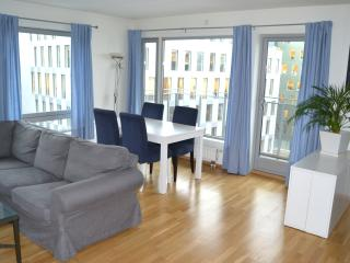Modern flat near Oslo central station - Oslo vacation rentals