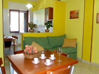 GITE en ville à cotè de NAPLE,SALERNO,POMPEI,SORRENTO - Baronissi vacation rentals