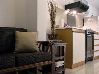 Modern 1 Bedroom Apartment - Haz-Zebbug vacation rentals