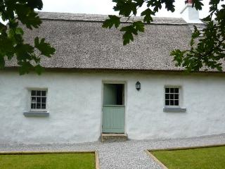 Perfect 3 bedroom Mountrath Cottage with Internet Access - Mountrath vacation rentals