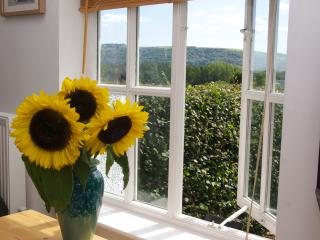 Lovely Studio with Internet Access and Television - Steyning vacation rentals