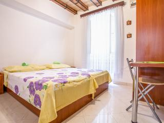 Apartment In The Center Of Old Town - Split vacation rentals
