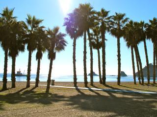CENTRAL Almuñecar, BEACH 2 minutes - Almunecar vacation rentals