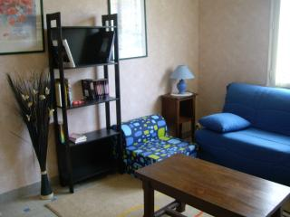 Nice Condo with Game Room and Television - Notre Dame de Monts vacation rentals