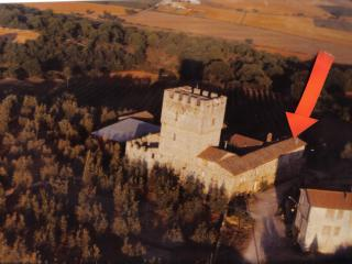 Apartment in rural incorporated  castle of Villa - Monteriggioni vacation rentals