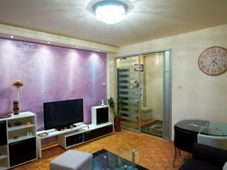 Usce Arena Superb Studio, sleeps 2, WIFI, parking - Belgrade vacation rentals