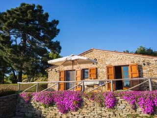 Tuscan holiday farmhouse villa features stunning grounds and pool, sleeps 4 - Cortona vacation rentals