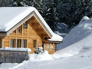 Charming Chalet with Internet Access and Satellite Or Cable TV - Les Prodains vacation rentals
