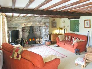 EITHIN FYNYDD stunning views, large grounds, woodburning stoves in Llanwchllyn Ref 14494 - Llanuwchllyn vacation rentals