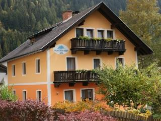 Säuleck Appartement - Mallnitz vacation rentals