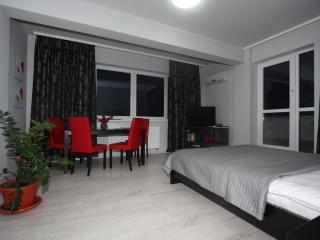 Romantic Apartment with Parking Space and Microwave in Turda - Turda vacation rentals