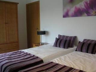 Lovely 1 bedroom Condo in Sao Martinho do Porto with A/C - Sao Martinho do Porto vacation rentals