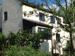 Nice 3 bedroom House in Newby Bridge - Newby Bridge vacation rentals