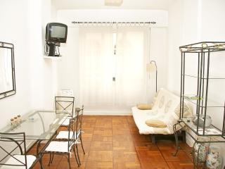 SQUARE ROYAL BORD DE MER - Nice vacation rentals