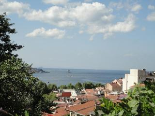 SEA VIEW WITH GARDEN TERRACE - Istanbul vacation rentals