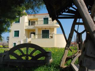 Luxurious waterfront villa - Aegina Town vacation rentals