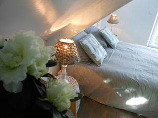 1 bedroom B&B with Internet Access in Pléneuf-Val-André - Pléneuf-Val-André vacation rentals