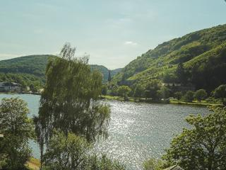 Appartement direkt an der Mosel FeWo Tibo - Bullay vacation rentals