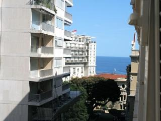 Cozy Monte-Carlo Studio rental with Internet Access - Monte-Carlo vacation rentals