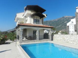 New Age Villa Chetin Near Hisaronu Bar Street - Oludeniz vacation rentals