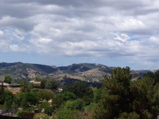 Luxury suite with fabulous view - Paso Robles vacation rentals