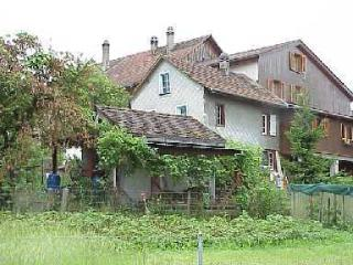 Old house behind the wood wall - Zurich vacation rentals