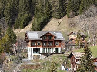 Nice Condo with Internet Access and Television - Wengen vacation rentals