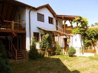 Cozy Sibiu Cottage rental with Internet Access - Sibiu vacation rentals
