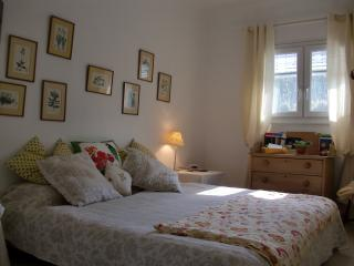 South of France Eagles retreat - Tourrette vacation rentals