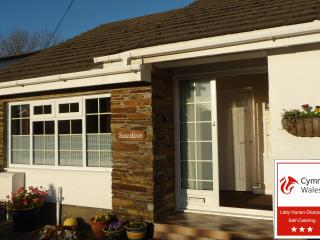 Nice Condo with Internet Access and Television - Saundersfoot vacation rentals