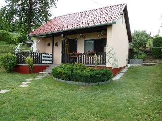 Family house / Thermal SPA TAMASI HUNGARY - Tamasi vacation rentals