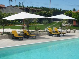 Bright 5 bedroom Viseu Villa with Central Heating - Viseu vacation rentals