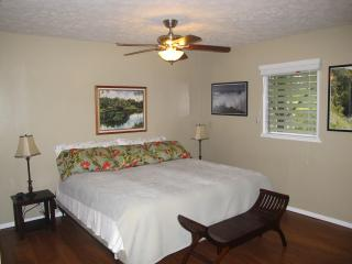The Gluten Free House/The Aloha Room - Ocean View vacation rentals