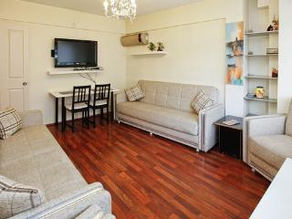 NEAR THE YILDIZ PARK - Istanbul vacation rentals