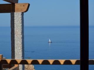 Ultrapanoramica Costa Paradiso - Costa Paradiso vacation rentals
