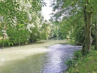 1 bedroom Cottage with Internet Access in Dampierre-sur-Boutonne - Dampierre-sur-Boutonne vacation rentals